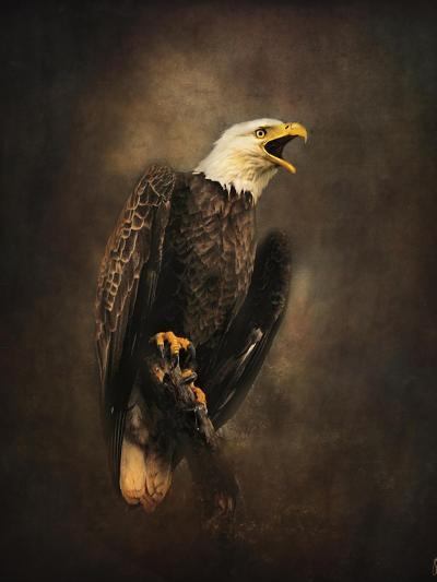 Crying for the Lost Bald Eagle-Jai Johnson-Giclee Print