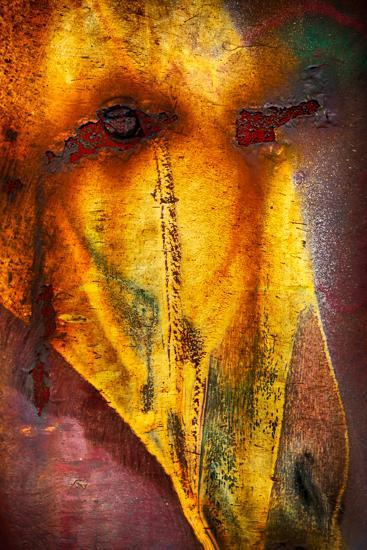 Crying Horse-Ursula Abresch-Photographic Print