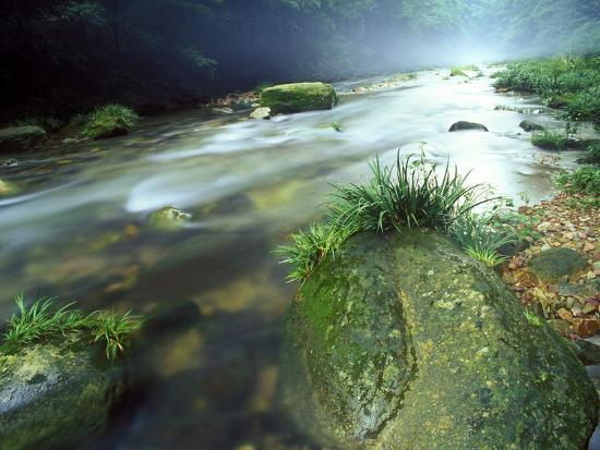Crystal Clear Water Flows Through the Lush Canyon of Zhangjiajie Forest, China-Keith Ladzinski-Photographic Print