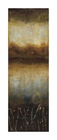 https://imgc.artprintimages.com/img/print/crystal-lake-i_u-l-f5o7wo0.jpg?p=0