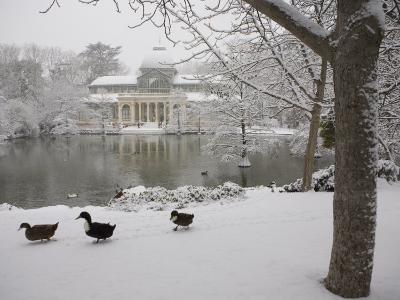 Crystal Palace in the Snow, Retiro Park, Madrid, Spain, Europe-Marco Cristofori-Photographic Print