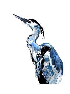 Coastal Blue Egret by Crystal Smith