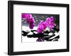 Branch Purple Orchid Flower With Therapy Stones by crystalfoto