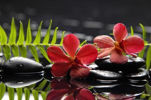 Oriental Spa with Orchid with Candle and Pebbles by crystalfoto