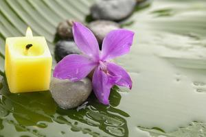 Pink Orchid and Stones with Yellow Candle on Wet Banana Leaf by crystalfoto