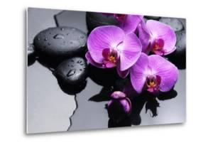 Still Life with Pebbles and Branch Orchid by crystalfoto