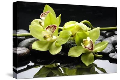 Zen Stones and Green Orchids with Water Drops