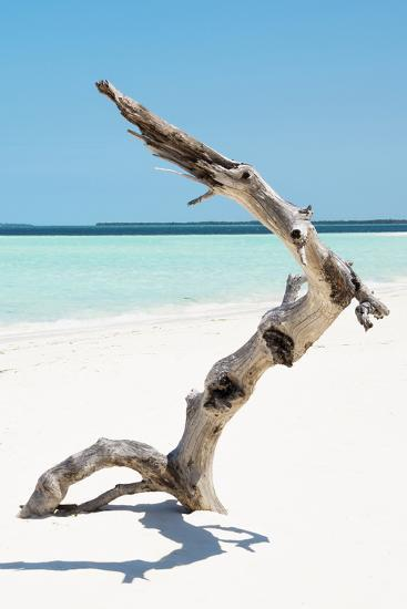 Cuba Fuerte Collection - Alone on the White Sandy Beach II-Philippe Hugonnard-Photographic Print