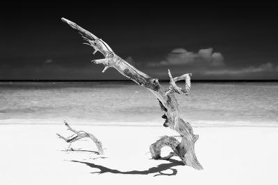 Cuba Fuerte Collection B&W - White Beach III-Philippe Hugonnard-Photographic Print