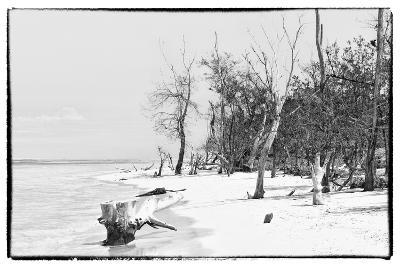 Cuba Fuerte Collection B&W - Wooden Beach-Philippe Hugonnard-Photographic Print