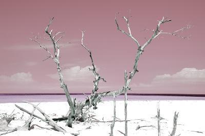 Cuba Fuerte Collection - Beautiful Wild Beach IV-Philippe Hugonnard-Photographic Print