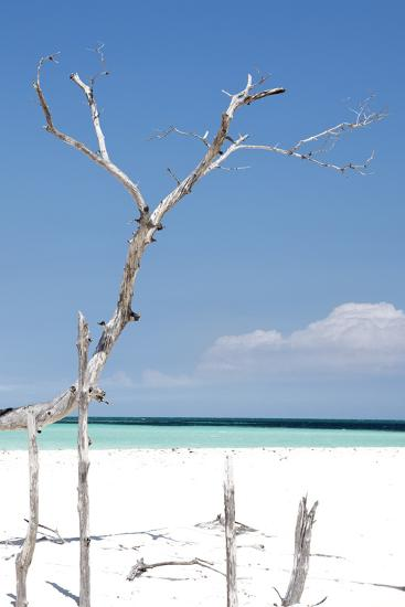 Cuba Fuerte Collection - Blue Serenity-Philippe Hugonnard-Photographic Print