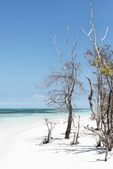 Cuba Fuerte Collection - Blue Summer-Philippe Hugonnard-Photographic Print