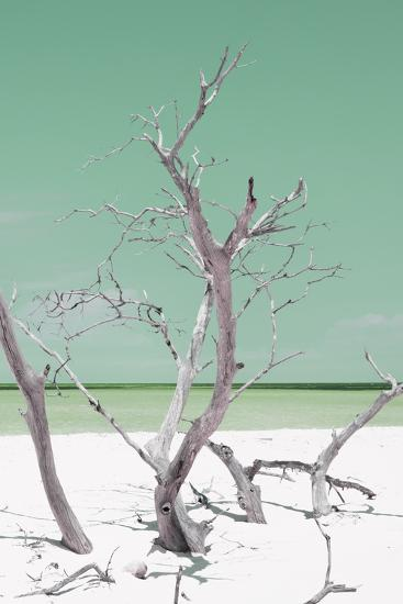 Cuba Fuerte Collection - Green Stillness II-Philippe Hugonnard-Photographic Print