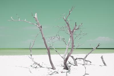 Cuba Fuerte Collection - Green Stillness-Philippe Hugonnard-Photographic Print