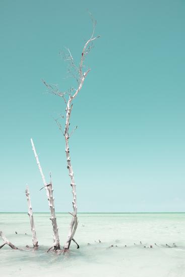 Cuba Fuerte Collection - Ocean Nature - Pastel Aquamarine-Philippe Hugonnard-Photographic Print