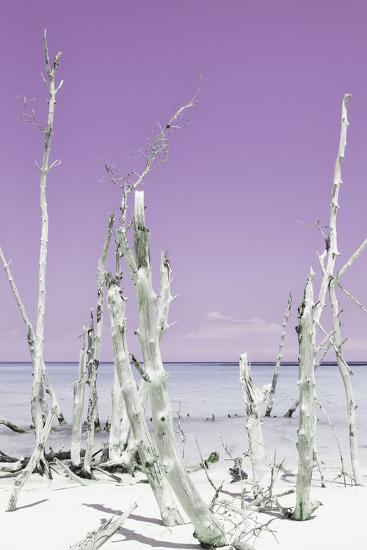 Cuba Fuerte Collection - Ocean Wild Nature II - Pastel Purple-Philippe Hugonnard-Photographic Print