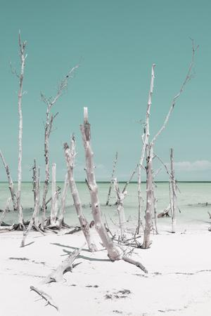 Cuba Fuerte Collection - Ocean Wild Nature III - Pastel Turquoise-Philippe Hugonnard-Photographic Print