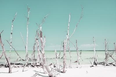 Cuba Fuerte Collection - Ocean Wild Nature - Pastel Coral Green-Philippe Hugonnard-Photographic Print