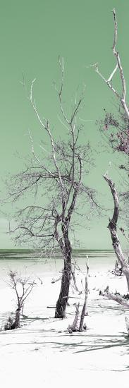 Cuba Fuerte Collection Panoramic - Olive Summer-Philippe Hugonnard-Photographic Print