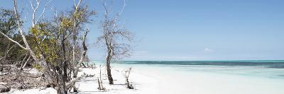 Cuba Fuerte Collection Panoramic - Sandy Beach Pastel Blue-Philippe Hugonnard-Photographic Print