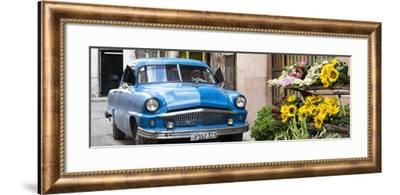 Cuba Fuerte Collection Panoramic - Sunflowers and Classic Car-Philippe Hugonnard-Framed Photographic Print