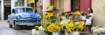 Cuba Fuerte Collection Panoramic - Sunflowers Havana-Philippe Hugonnard-Photographic Print