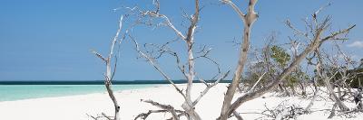 Cuba Fuerte Collection Panoramic - Tropical Beach Nature-Philippe Hugonnard-Photographic Print