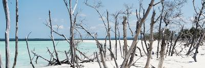 Cuba Fuerte Collection Panoramic - Tropical Wild Beach-Philippe Hugonnard-Photographic Print