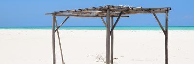 Cuba Fuerte Collection Panoramic - Wild Arbor-Philippe Hugonnard-Photographic Print