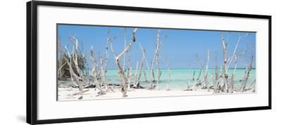 Cuba Fuerte Collection Panoramic - Wild Beach-Philippe Hugonnard-Framed Photographic Print