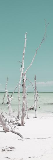 Cuba Fuerte Collection Panoramic - Wild White Sand Beach II - Pastel Turquoise-Philippe Hugonnard-Photographic Print
