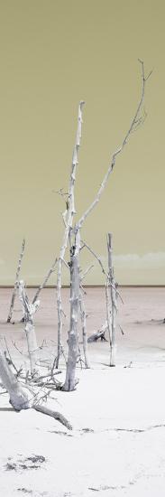 Cuba Fuerte Collection Panoramic - Wild White Sand Beach II - Pastel Yellow-Philippe Hugonnard-Photographic Print