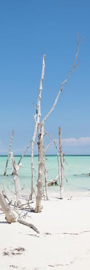 Cuba Fuerte Collection Panoramic - Wild White Sand Beach II-Philippe Hugonnard-Photographic Print