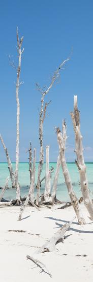 Cuba Fuerte Collection Panoramic - Wild White Sand Beach-Philippe Hugonnard-Photographic Print