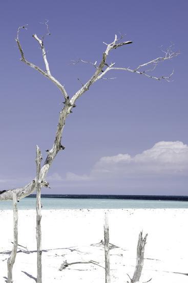 Cuba Fuerte Collection - Purple Serenity-Philippe Hugonnard-Photographic Print