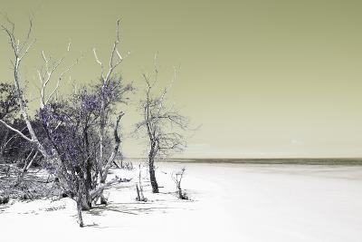Cuba Fuerte Collection - Sandy Beach Pastel Olive-Philippe Hugonnard-Photographic Print