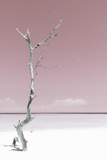 Cuba Fuerte Collection - Solitary Tree - Pastel Red-Philippe Hugonnard-Photographic Print