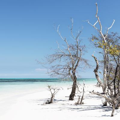 Cuba Fuerte Collection SQ - Blue Summer-Philippe Hugonnard-Photographic Print