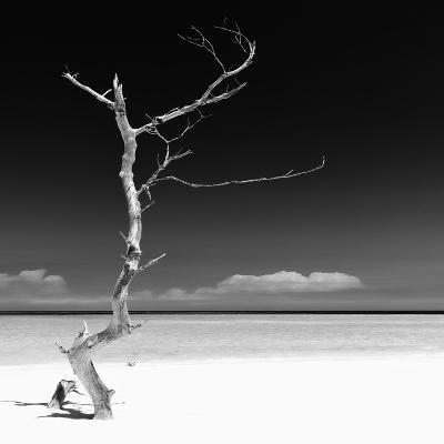 Cuba Fuerte Collection SQ BW - Alone on the White Sandy Beach-Philippe Hugonnard-Photographic Print