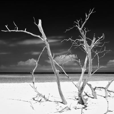 Cuba Fuerte Collection SQ BW - Stillness-Philippe Hugonnard-Photographic Print
