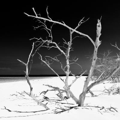Cuba Fuerte Collection SQ BW - Tropical Beach Nature-Philippe Hugonnard-Photographic Print