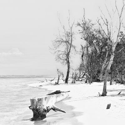 Cuba Fuerte Collection SQ BW - White Sand Beach-Philippe Hugonnard-Photographic Print