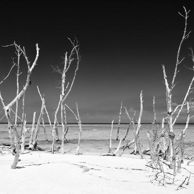 Cuba Fuerte Collection SQ BW - Wild Beach-Philippe Hugonnard-Photographic Print