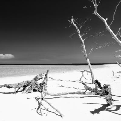 Cuba Fuerte Collection SQ BW - Wild White Sand Beach-Philippe Hugonnard-Photographic Print