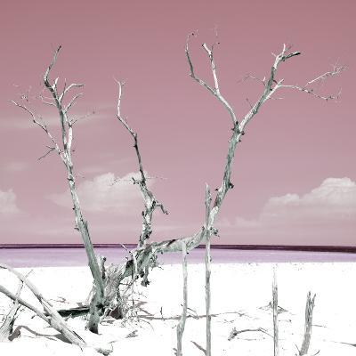 Cuba Fuerte Collection SQ - Hot Pink Serenity-Philippe Hugonnard-Photographic Print
