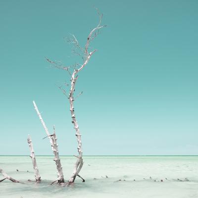 Cuba Fuerte Collection SQ - Ocean Nature - Pastel Aquamarine-Philippe Hugonnard-Photographic Print