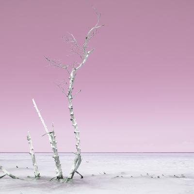 Cuba Fuerte Collection SQ - Ocean Nature - Pastel Pink-Philippe Hugonnard-Photographic Print