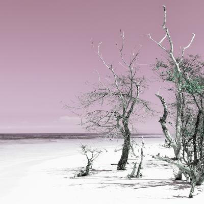 Cuba Fuerte Collection SQ - Pale Violet Summer-Philippe Hugonnard-Photographic Print