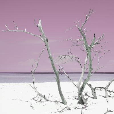 Cuba Fuerte Collection SQ - Pink Stillness-Philippe Hugonnard-Photographic Print
